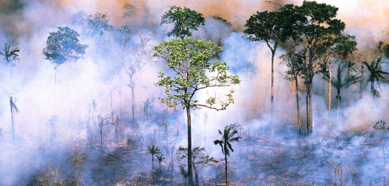 Svet u paklu dugova zbog klimatskih promena