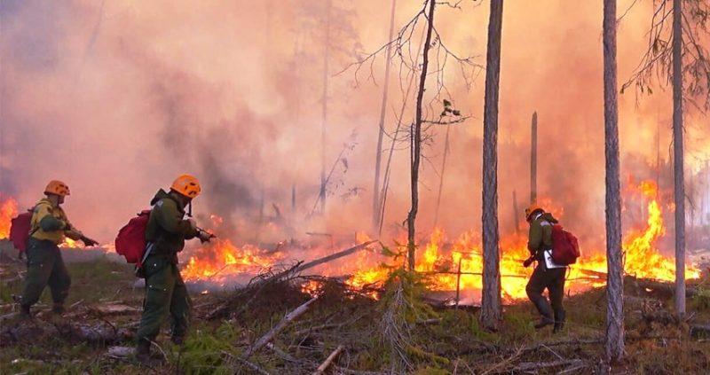 Planetom haraju požari