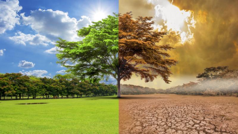 Klimatske promene - geoperspektiva