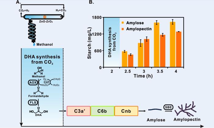 skroba iz CO2